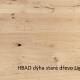 HBAD-dyha-stare-drevo-light